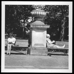 Two generations relaxing in a park reading and knitting.  Historical Black and White Photo Postcard