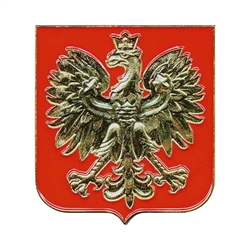 This beautiful magnet crest features the Polish eagle in gold on a red background. So whether the image draws you back to the time of Lech or just holds things to your fridge and reminds you of Grandpa, no kitchen could be complete without it.  Case not i