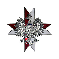 Issued after 1920.  Established in 1915 in Warsaw, Petkow, Wolbrom.  Two piece construction, white and red enameled cross with silver crowned eagle superimposed in the center.  Mini Order of the Virtuti Militari on the chest of the eagle.