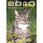 Koty 2010 - Polish Cats Wall Calendar