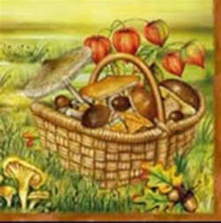 Polish Mushroom Luncheon Napkins (package of 20)  Three ply napkins with water based paints used in the printing process.