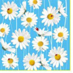 Ladybugs and Daisies Luncheon Napkins (package of 20).  Three ply napkins with water based paints used in the printing process.