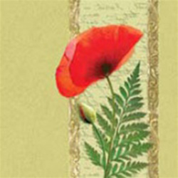 Polish Poppy Dinner Napkins (package of 20).  Three ply napkins with water based paints used in the printing process.