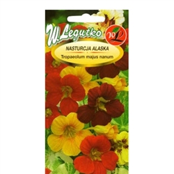 Eye-catching variety with spreading stems and nice flowers in yellow, orange and scarlet tints. These bright inflorescences make excellent contrast to white-green, motley leaves. Ideal for flowerbeds, containers and balcony boxes.