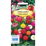 Attractive variety with splendid, spherical inflorescences in wide range of colours. Flower heads come to 3-4 cm in diameter. Perfect for bedding, cutting, borders and group arrangements.