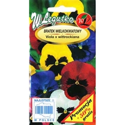 Pansy's mixture producing large flowers in a wide range of white, yellow, red and blue shades with blotch on the bottom petals. Ideal for decorating flowerbeds, containers and balconies.