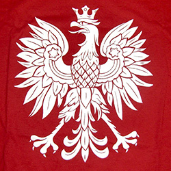 Great way to display your child's Polish heritage.Polish Prince T-Shirt, Children's