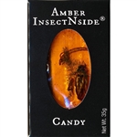 Amber InsectNside (Amber Brittle), is a ribbon style toffee flavored candy with insects and fern trapped inside. Looks like fossilized amber.  Kids love this item.  They have more fun looking at it than anything!