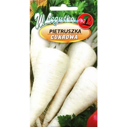 Parsnip - Pietruszka Cukrowa - Petroselinum crispum