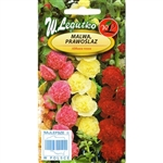 Hollyhock Mixed - Malwa, Prawoslaz - Althaea rosea. Imported from Poland.