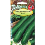 Cucumber Seeds - Ogorek Tessa . Imported from Poland.  