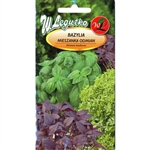 Extraordinary mixture of different Basil varieties. Individually attractive and unique in appearance - from frilly spice to plain leaved spice. Together they offer a symphony of flavors to tantalize your taste buds in salads, cooking and garnishes.