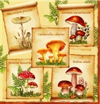 "Polish Folk Art Dinner Napkins (package of 20) - ""Polish Mushrooms"" - Three ply napkins with water based paints used in the printing process."