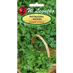 Parsley - Pietruszka Naciowa Petroselinum crispum Imported from Poland. Flat Leaved Parsley Aromatic variety with smooth, rich in vitamins leaves. Plenty of leafy plants resistant to low temperatures - can overwinter in the soil, sowing seeds from March