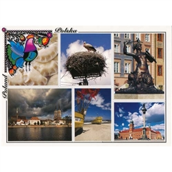 Polish full color glossy post cards are perfect for those school heritage projects. Scenes from around Poland including: Russian Pirozhki Stork - Bocian Warsaw's Mermaid - Warszawska Syrenka Wroclaw - Wroclaw The Baltic Sea - Morze Baltyckie Warsaw