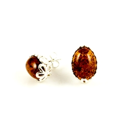 Open back oval amber earrings set in a sterling silver frame really highlight the amber inclusions.