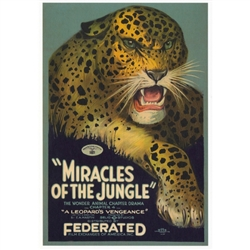 "Postcard: Post Card: Miracles of The Jungle, Polish Movie Poster.  It has now been turned into a post card size 4.75"" x 6.75"" - 12cm x 17cm."