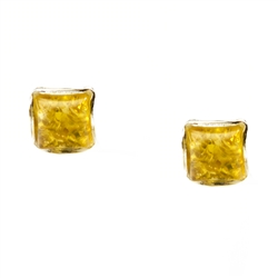 Citrine Baltic Amber mini stud earrings with Sterling Silver detail.