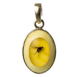 This unique amber pendant has a winged insect trapped inside a honey amber stone.  This clear stone has been inlaid a milky amber stone.