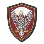 "Embroidered Polish Army Paratroop patch with a silver Polish Eagle. Sew on patch. Size approx 3.25"" x 2.25. Made In Poland."