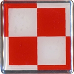 "Raised plastic sticker.  1.5"" square."