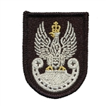 Embroidered silver Polish Eagle with gold crown and talons.  Sew on patch.