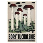 "Post Card: Bory Tucholskie, Polish Tourist Poster designed by artist Ryszard Kaja in 2018. It has now been turned into a post card size 4.75"" x 6.75"" - 12cm x 17cm."