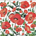 Polish Luncheon Napkins (package of 20) - Polish Poppies