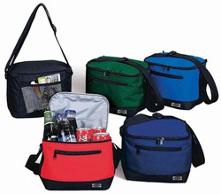 BASIC 6-PACK INSULATED COOLER