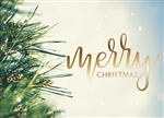 Merry Christmas Evergreen - Holiday Greeting Card