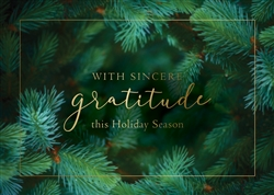 Holiday Evergreen Gratitude Holiday Greetings Card