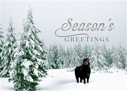 Bull in Elegant Snowscape - Holiday Greeting Card