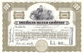 American Meter Company - 100 Shares