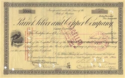 1905 Parrot Silver and Copper Company Stock Certificate