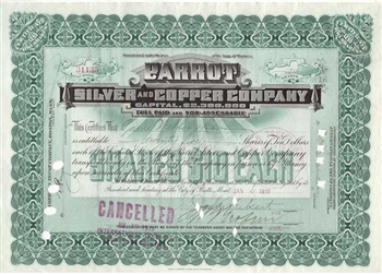 1906 Parrot Silver and Copper Company Stock Certificate