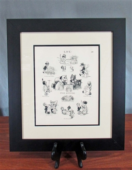 1905 Stock Exchange Cartoon - Framed