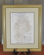 Framed NYSE Group Family Tree