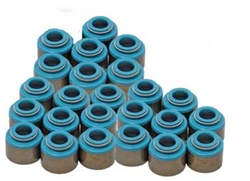 Viton Valve Seal Set - 5VZ