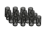 Street Performer Valve Spring Set of 16 2RZ/3RZ