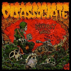 Disassociate - Imperfect World LP