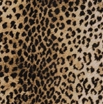 Leopard Embossed Gift Wrap
