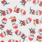 Kitty Christmas Design Gift Wrap