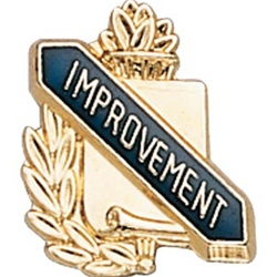 SCHOOL IMPROVEMENT PIN