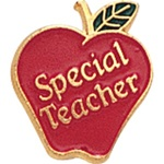 SPECIAL TEACHER PIN