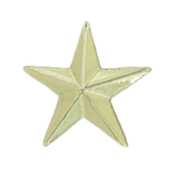 SMALL GOLD STAR PIN