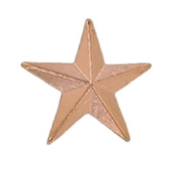 SMALL BRONZE STAR PIN