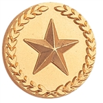 GOLD CIRCLE STAR PIN