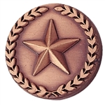 BRONZE CIRCLE STAR PIN