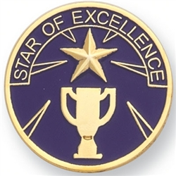 STAR OF EXCELLENCE PIN