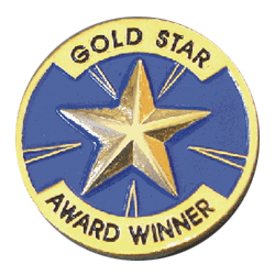 GOLD STAR AWARD WINNER PIN